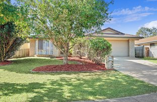 Picture of 19 Vermilion Avenue, Griffin QLD 4503