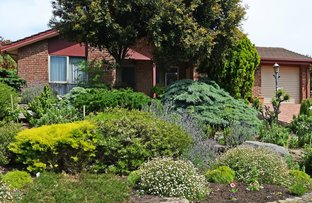 16 Furioso Drive, Woodcroft SA 5162