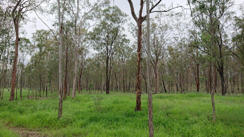 237 Edwards Road, Gatton QLD 4343, Image 1
