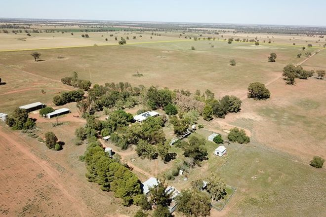 Picture of 'Waratah' 176 Lincoln Lane, NARROMINE NSW 2821