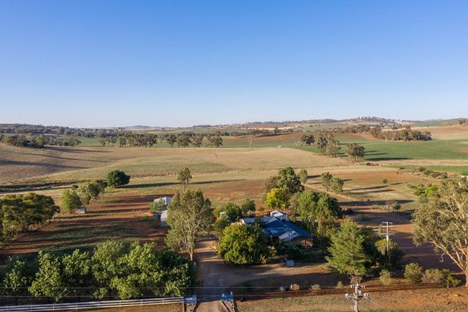 "Picture of ""Wirlinga"" 245 Jugiong Road, COOTAMUNDRA NSW 2590"