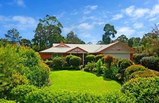 Picture of 3 Jacaranda Place, Maleny QLD 4552