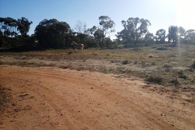 Picture of Boundary Street, WEST WYALONG NSW 2671