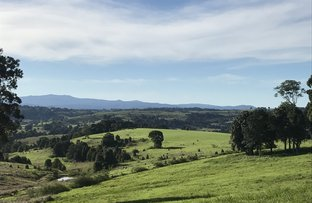Picture of Lot 419 Spurfield Road, Mc Leans Ridges NSW 2480