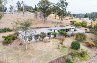 Picture of 46 Traill Road, Exeter TAS 7275