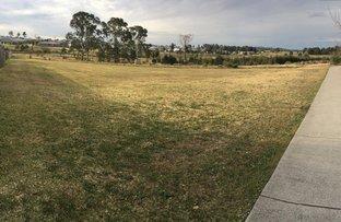 Redgum Circuit, Aberglasslyn NSW 2320