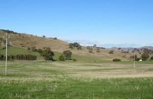 Picture of Lot 4 Burra Road, Gundagai NSW 2722