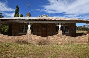 Picture of 5a Cardigan Street, Renwick NSW 2575