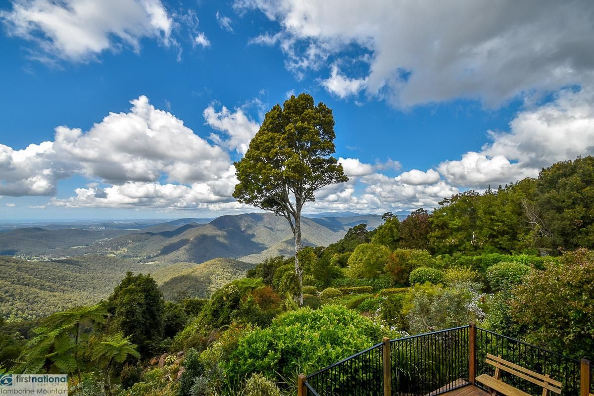 Tamborine Mountain QLD 4272, Image 1