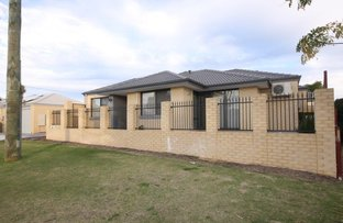 Picture of 31 A Robin Hood Ave, Armadale WA 6112