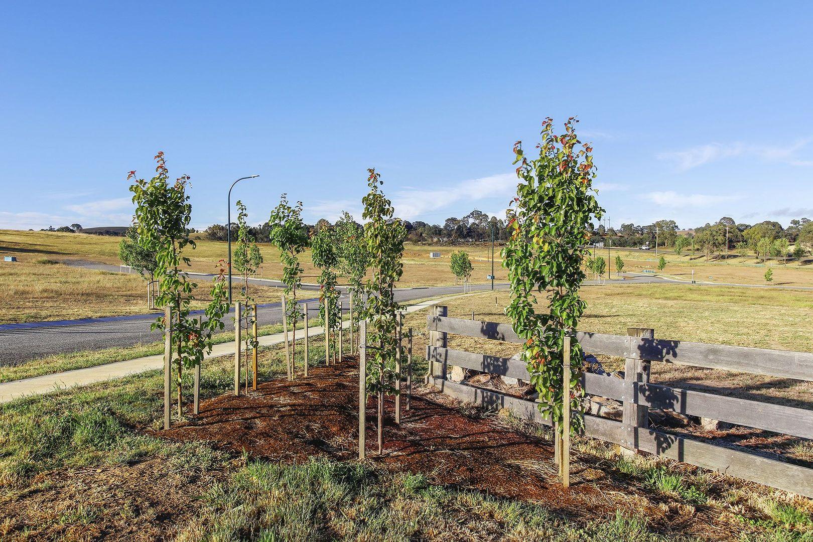 2 Green Avenue, Gunning NSW 2581, Image 0