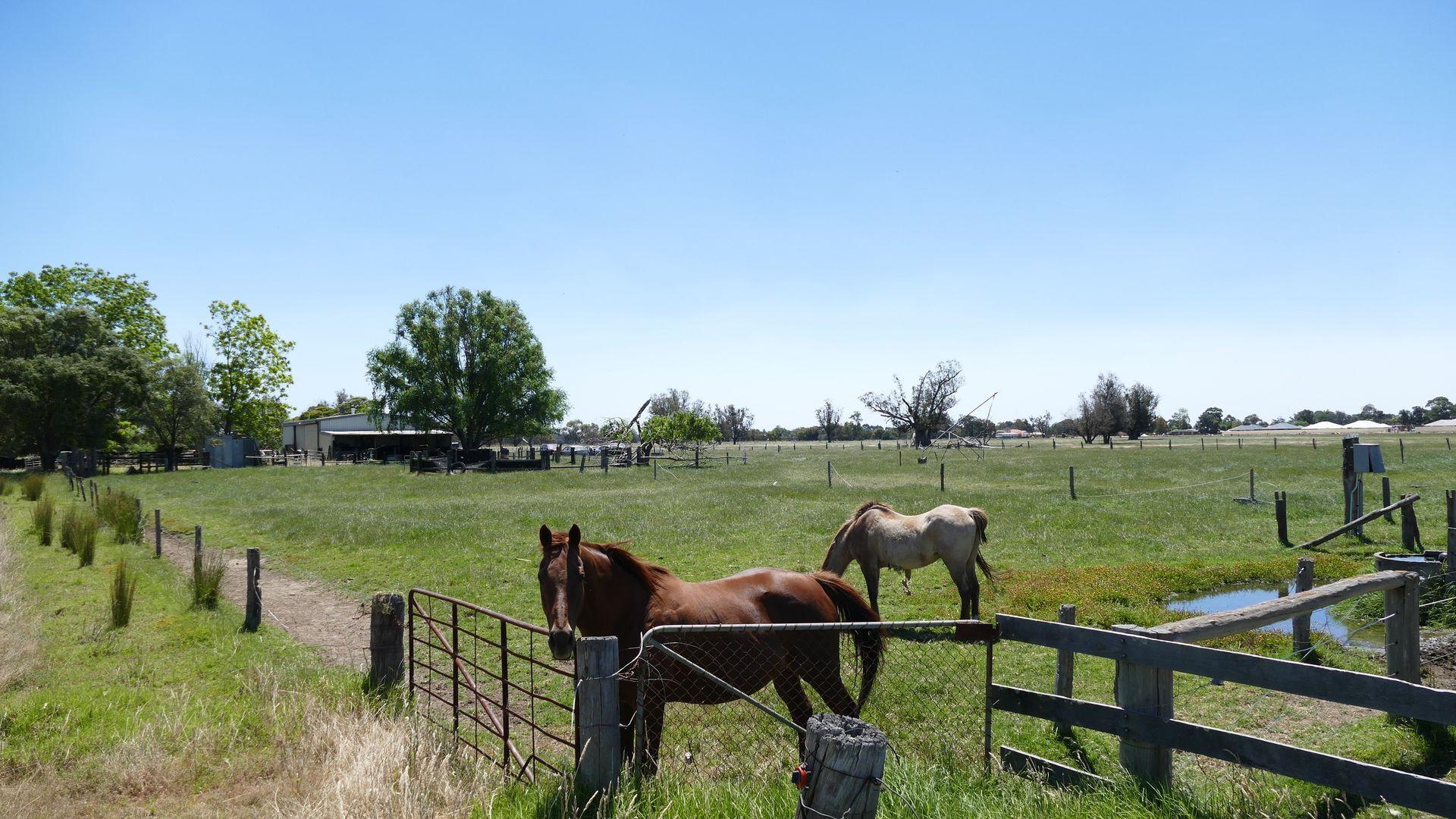 39 Fees Road, Dardanup WA 6236, Image 2