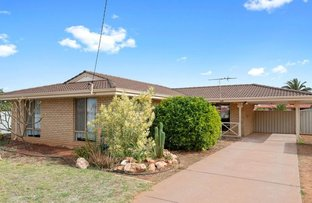 Picture of 1 Eccles Place, Hannans WA 6430