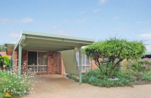 Picture of 3/10 Bulolo Street, Ashmont NSW 2650