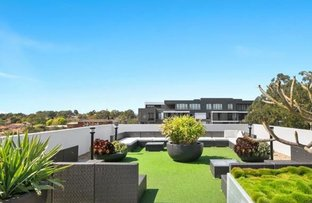 303N/1 Lardelli Drive, Ryde NSW 2112
