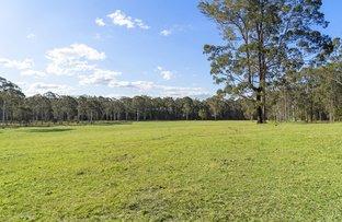 Picture of 619 Mandalong Road, Mandalong NSW 2264