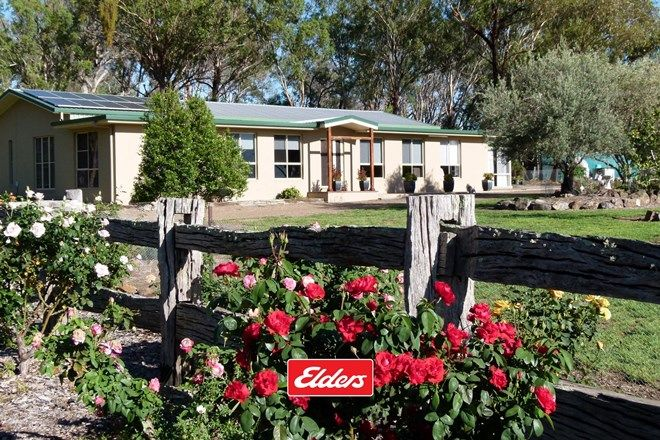 Picture of 491 Goomerah Lane, INVERELL NSW 2360