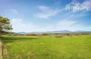 Lot 1 Twist Creek Road, Yackandandah VIC 3749