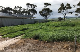 Picture of Lot 300 Roche Street, Freeling SA 5372