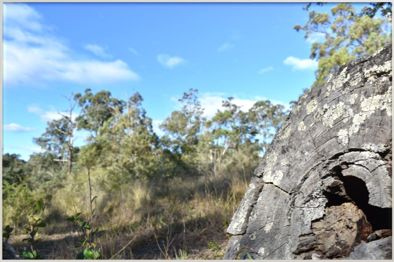 20 Stringer Road, Kellyville NSW 2155, Image 1