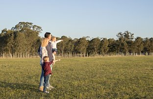 Picture of Lot 224 St Helena Vilage, Lochinvar NSW 2321