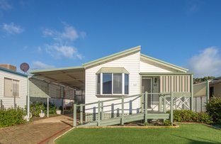 Picture of 117/445 Pinjarra Road, Coodanup WA 6210