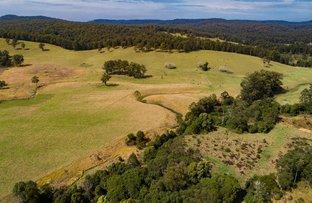 Picture of Part 128 Upper Corindi Rd, Upper Corindi NSW 2456