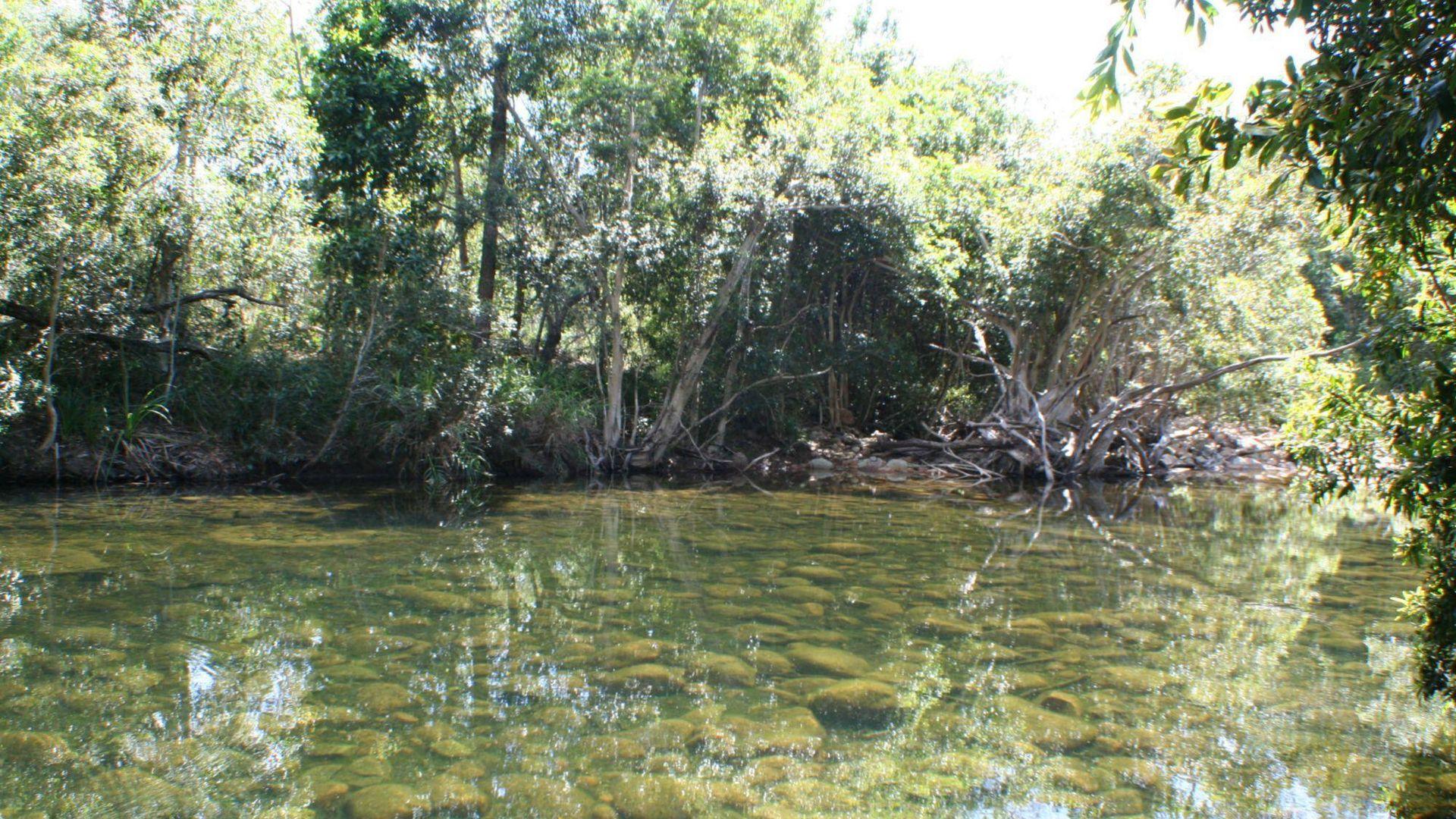 Lot 5 Five Mile Creek Road, Cardwell QLD 4849, Image 2