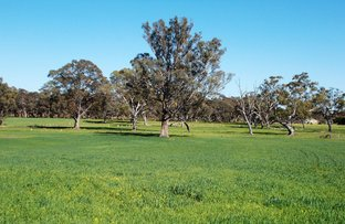 Picture of Lot 1 Rowney Road, Mundulla SA 5270
