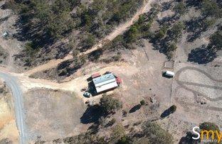 Picture of 295 Rampion Hills Road, Marulan NSW 2579