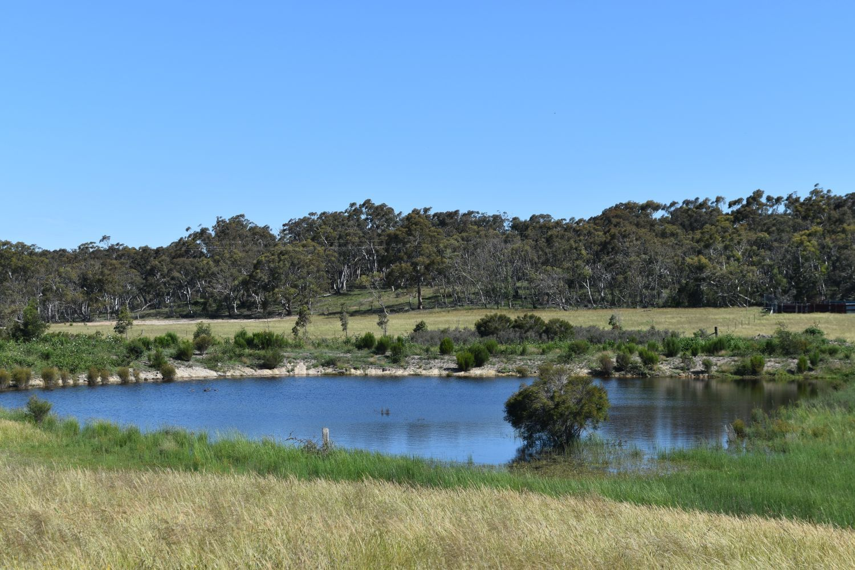 1198 Cullulla Road, Lower Boro NSW 2580, Image 1