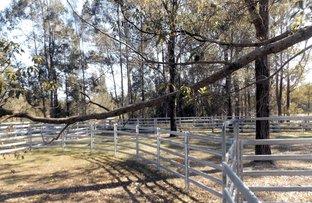 Picture of Lot 2, 26 & 44 Seven Hills Road, Collombatti NSW 2440