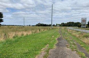Picture of Terang-Mortlake Road, Terang VIC 3264
