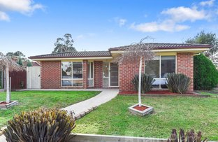 Picture of 47 Terama  Crescent, Bayswater VIC 3153