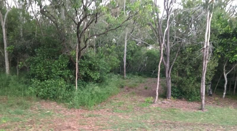 lot 6 murdochs  Road, Moore Park Beach QLD 4670, Image 1