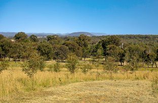 Picture of 528 Main Road, Cliftleigh NSW 2321
