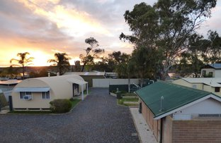 Picture of 30 Porter Street, Mannum SA 5238