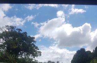Picture of 1440 Milla-Milla Malanda Road, Tarzali QLD 4885
