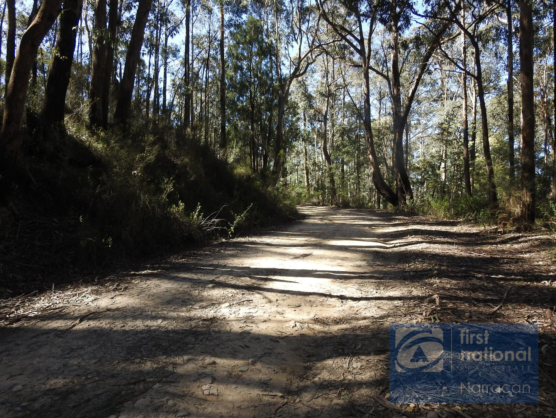 Lot 4 Happy Go Lucky Road, Walhalla VIC 3825, Image 0