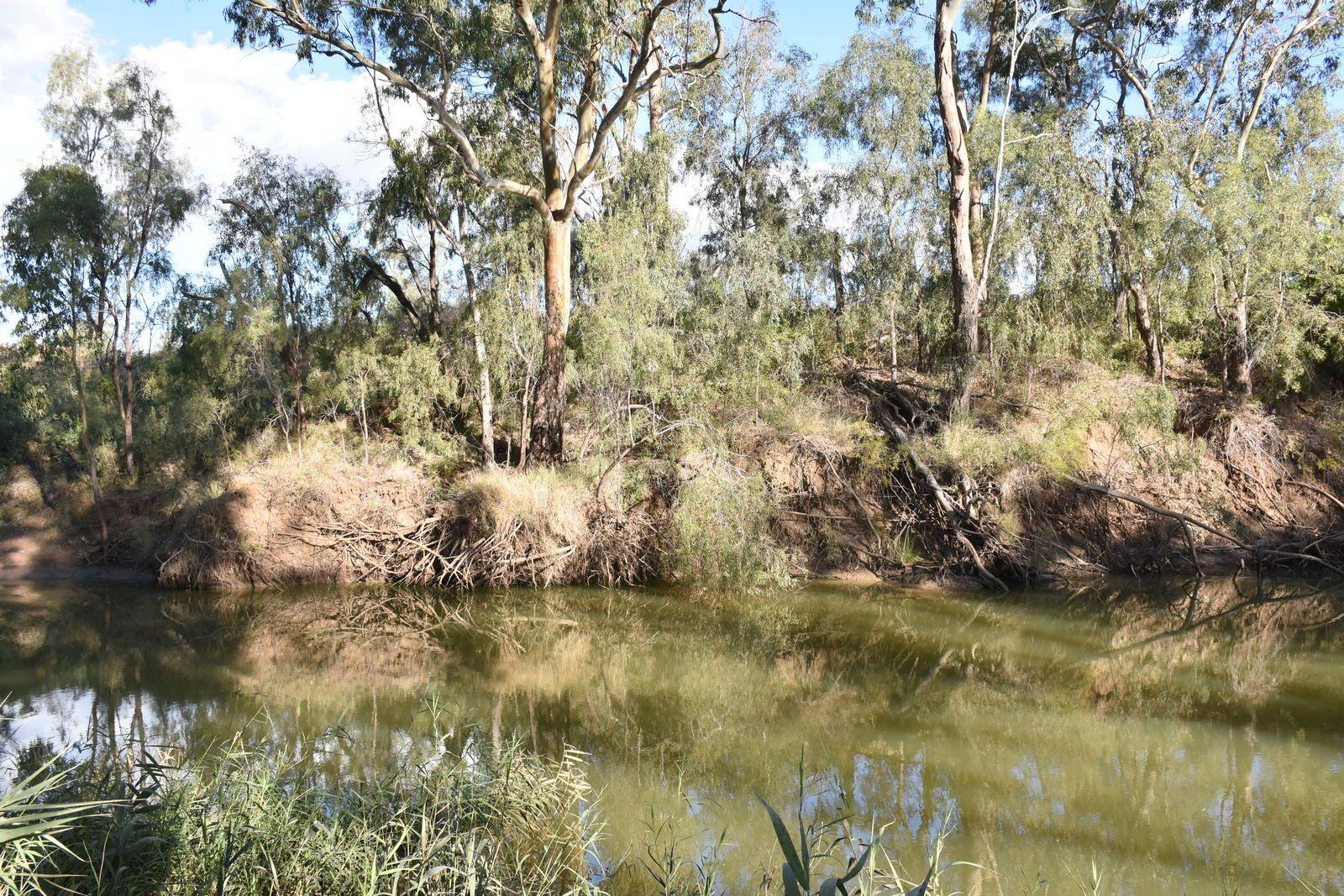 7 Jackson Grove, Moree NSW 2400, Image 1