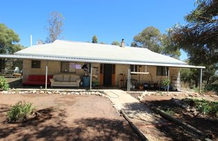 Picture of 661 Mackintosh Road, Cadell SA 5321