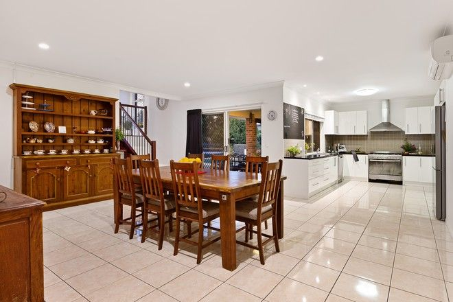 Picture of 56 Forest-Oak Drive, UPPER COOMERA QLD 4209