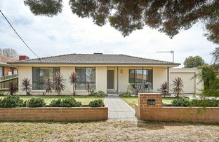 Picture of 3 Carmody Street, Kooringal NSW 2650