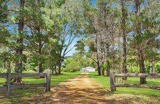 Picture of 843 Sandy Creek Road, Quorrobolong NSW 2325