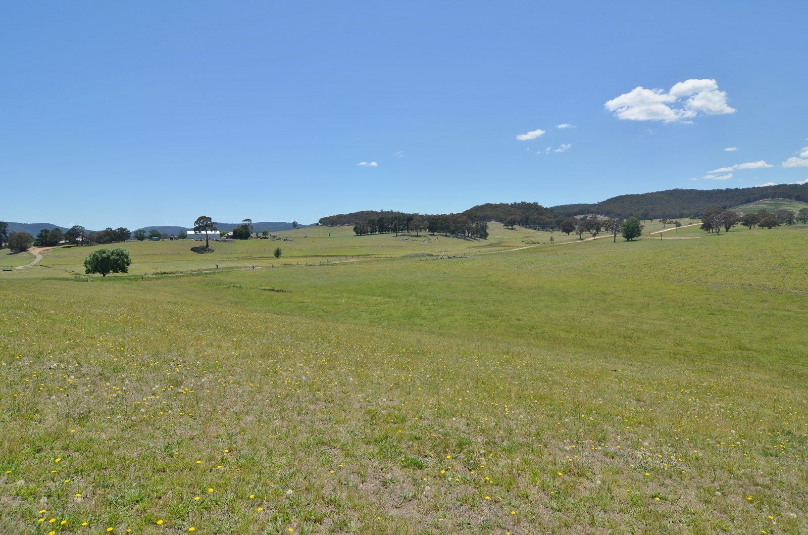 Lot 14 Back Cullen Road, Portland NSW 2847, Image 2