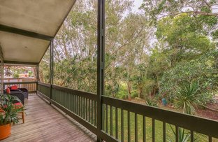 Picture of 865 Waterworks Road, The Gap QLD 4061