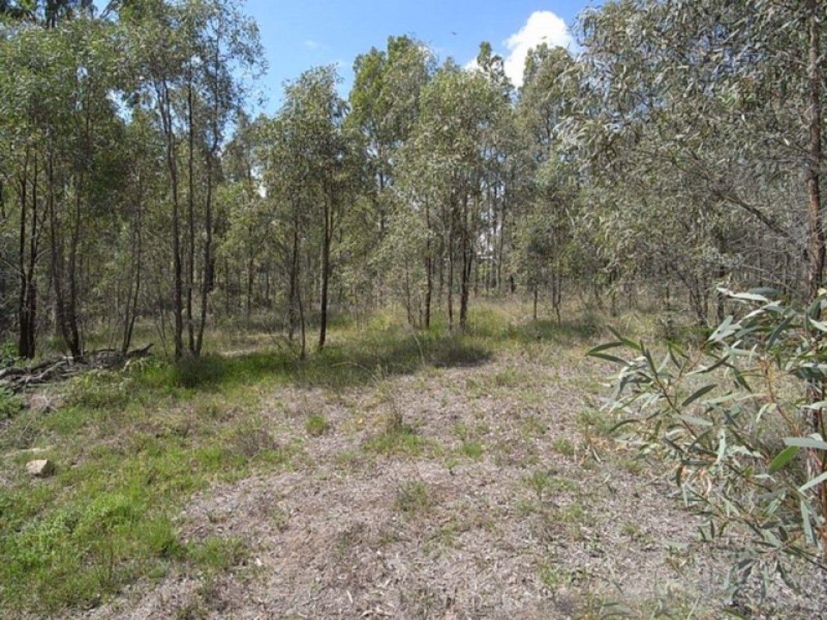 36 Kingfisher Court, Muswellbrook NSW 2333, Image 1