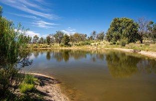 Picture of 1202 Bakers Creek Road, Bundarra NSW 2359