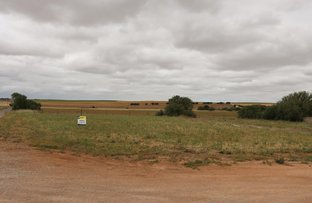 Picture of 9 First Street, Curramulka SA 5580