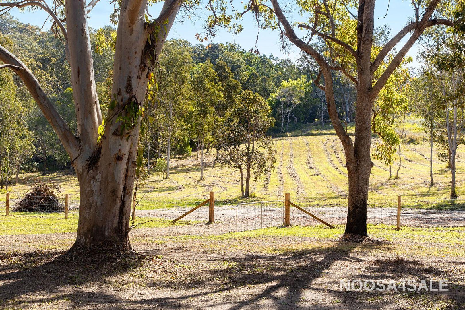 20 Mahers Road, Cooran QLD 4569, Image 1